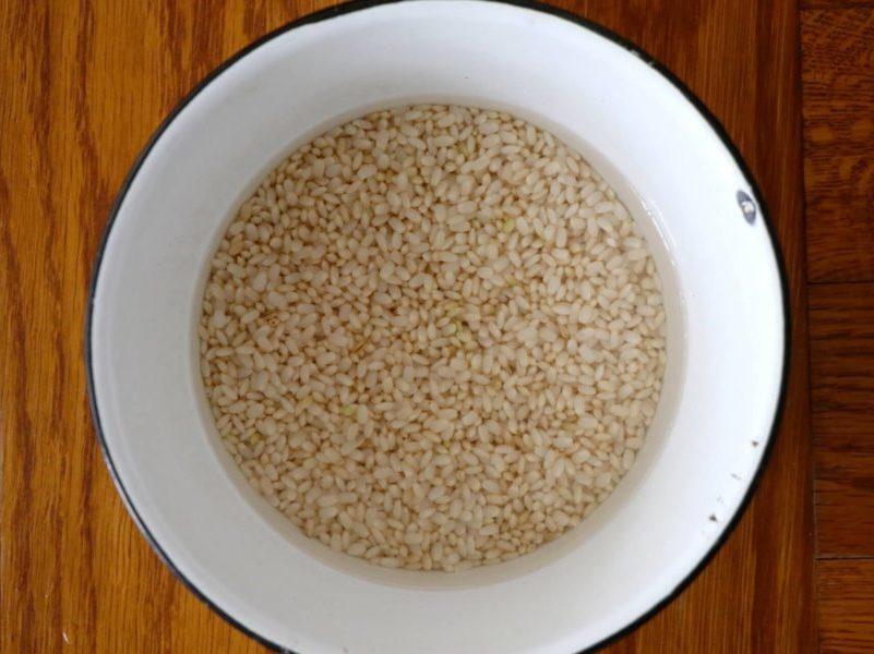 「発芽玄米」とは?お米の特徴を解説