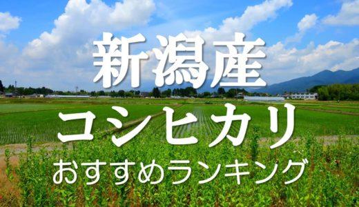 新潟県産コシヒカリおすすめランキングTOP10!日本一消費されている「最高峰」のお米