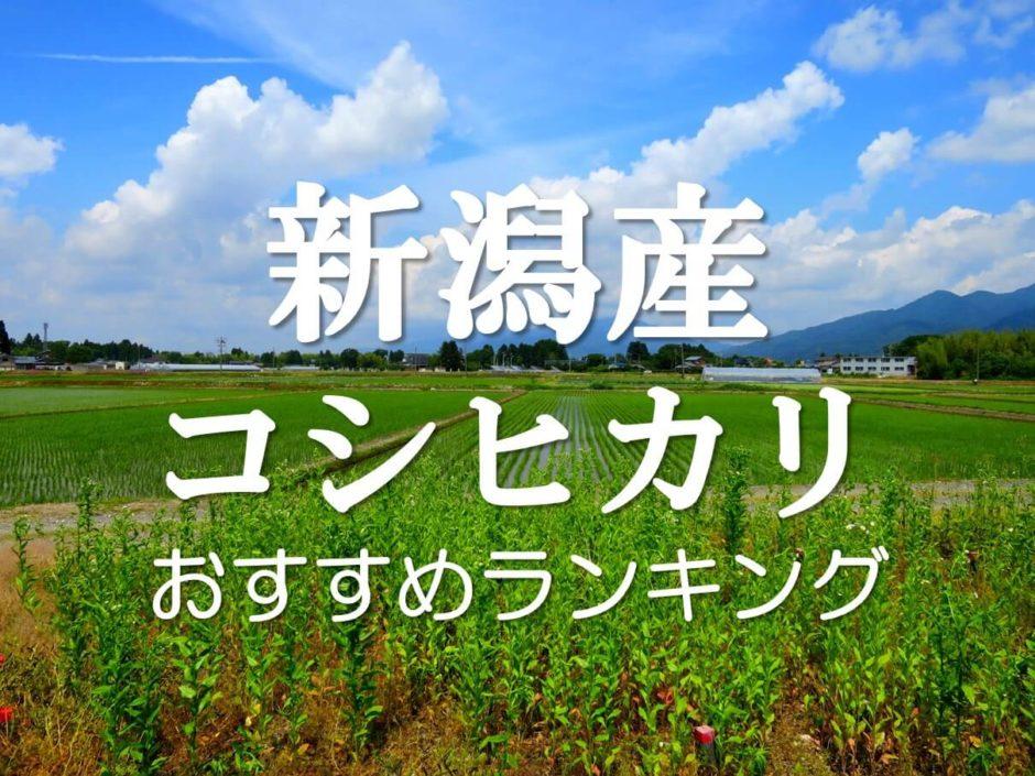 新潟 コシヒカリ